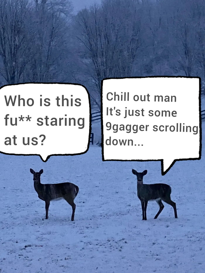 Bambi grew up to be extremely annoyed deer...