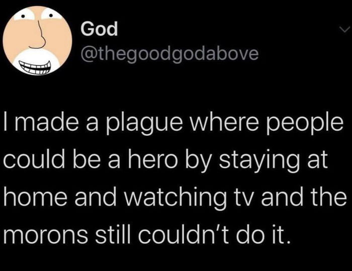 God @thegoodgodabove  I made a plague where people could be a hero by staying at home and watching tv and the morons still couldn't do it.