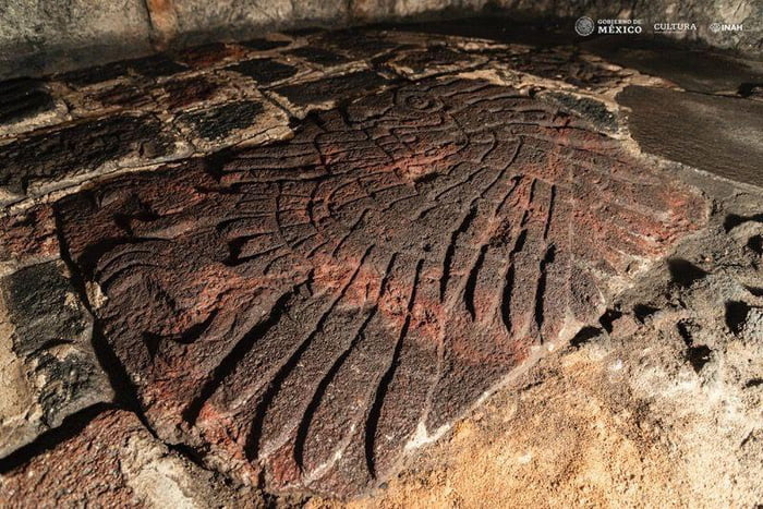 A striking 600-year-old Aztec sculpture depicting a golden eagle has been uncovered in an ancient temple in Mexico, archaeologists with Mexico's National Institute of Anthropology and History (INAH) announced Monday (Jan. 25).