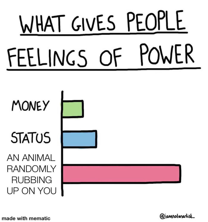 WHAT GIVES PEOPLE FEELINGS 0? POWER  MONEY  STATUS  AN ANIMAL RANDOMLY RUBBING UP ON YOU