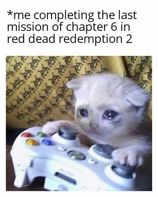*me completing the last mission of chapter 6 in red dead redemption 2